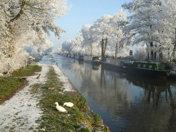 Central Shires (Trent & Mersey Canal), Drifters waterways holidays (John Blunn)